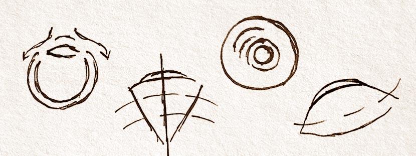Contact Lens Sketches
